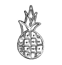 Pineapple fresh fruit icon vector