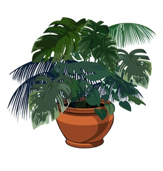 plants in pot vector image