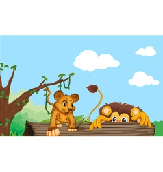Cub and lion vector