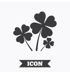 Clovers with four leaves sign st patrick symbol vector