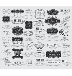 Set of hand-drawing calligraphic floral design vector