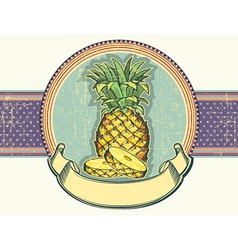 Pineapple vintage label on old paper backgro vector image