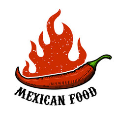 Mexican food chili pepper with fire isolated on vector