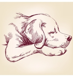 Dog hand drawn llustration realistic sketch vector