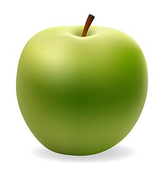 apple 001 vector image