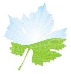 Wine leaf vector