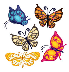 Five colorful beautiful butterfly insect vector