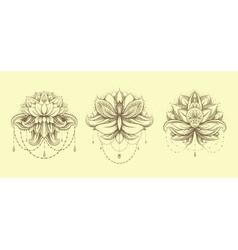 ornamental Lotus set vector image vector image