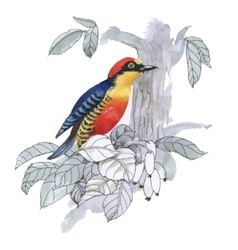 Watercolor exotic bird vector image