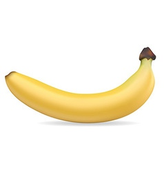 banan 001 vector image