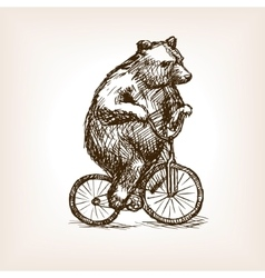 Circus bear on bicycle hand drawn sketch vector image vector image