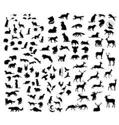 The big set of forest animals silhouettes vector