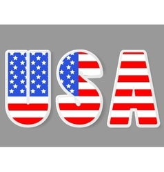 USA letters with flag background vector image vector image