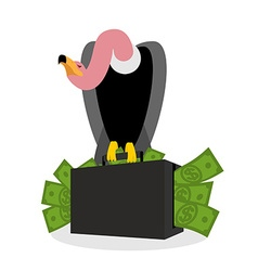 Vulture sitting on suitcase of money griffon and vector
