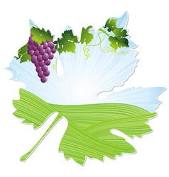 wine pink leaf vector image