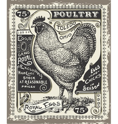 Vintage Poultry and Eggs Advertising Page vector image