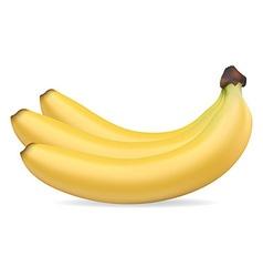 banan 002 vector image