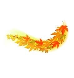 Autumn  fall leaf vector