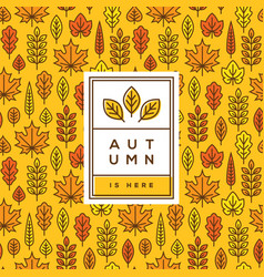 Bright autumn cover banner or poster design vector