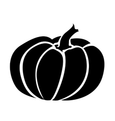 Drawing of a pumpkin vector