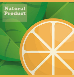 orange natural product poster design vector image vector image