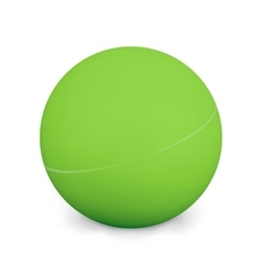 Ping Pong Ball Isolated On White Background vector image vector image