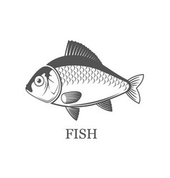 Fish logo grey isolated black vector