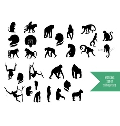 The big set of wild monkeys silhouettes vector