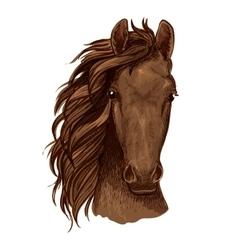Arabian brown stallion portrait vector image