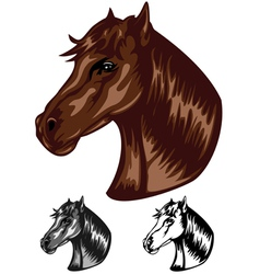 horse color vector image