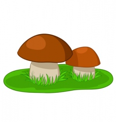 Two mushrooms with green grass vector