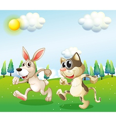 A bunny and a cat running vector