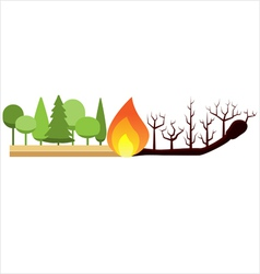 Fire in the forest vector image