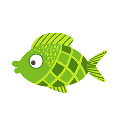 Green checkered fantastic colorful aquarium fish vector