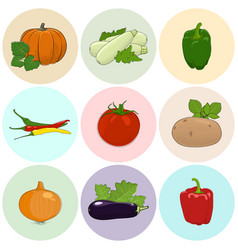Round colored icons fresh vegetables vector