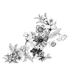 Summer garden blooming flowers monochrome vector