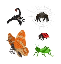 Cartoon set scorpion spider butterfly ladybug vector