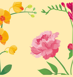 cartoon petal vintage floral background vector image