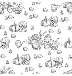 Hand drawn seamless pattern of garlic vector