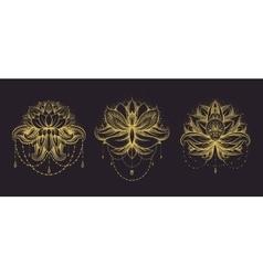 ornamental Lotus set vector image