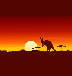 Silhouette kangaroo at sunrise landscape vector