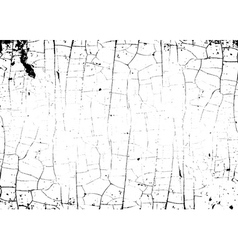 Grunge craquelure cracked texture white black vector