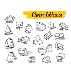 Cheese types vector