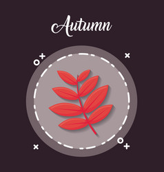 Autumn season design vector