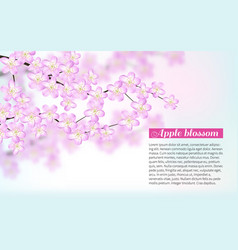 Branche pink flower white background flying petals vector