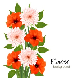 Flower summer background vector image