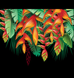 tropical plants heliconia and flowers vector image vector image