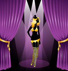 Curtain cabaret vector
