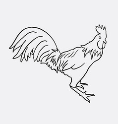 rooster artistic doodle vector image