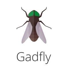 Gadgly skin parasite insect bug vector